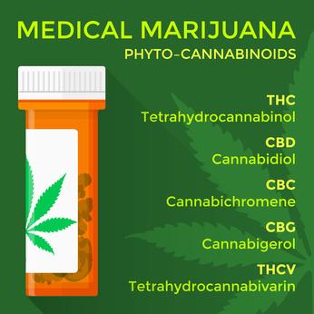 麻薬について
