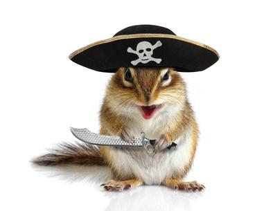 動物海賊、帽子とサーベルをもつリス
